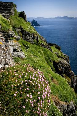 The Slopes of Skellig Michael Off the Kerry Coast, Ireland by Chris Hill