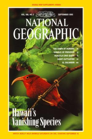 Cover of the September, 1995 National Geographic Magazine by Chris Johns