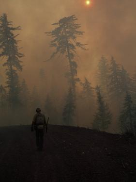 Firefighter Walking Up a Hill in the Smoke of a Forest Fire by Chris Johns