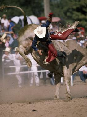 Rodeo Rider Being Bucked Off of a Bull by Chris Johns