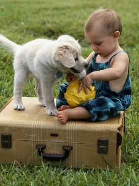 Baby Girl Playing with Puppy by Chris Lowe