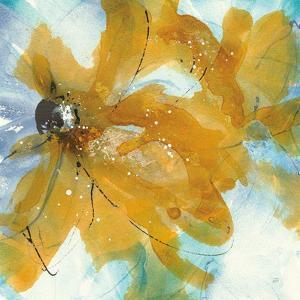 Amber Blue II by Chris Paschke