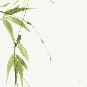 Bamboo V Green by Chris Paschke