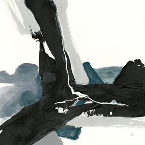 Black and Dark Teal III by Chris Paschke