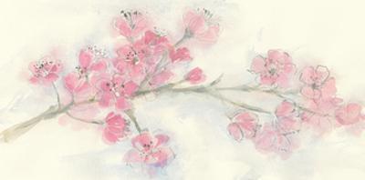 Cherry Blossom I by Chris Paschke