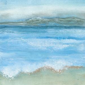 Coastal I by Chris Paschke