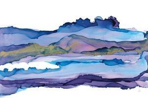 Coastal Ink II by Chris Paschke