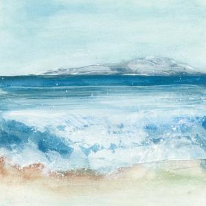 Coastal IV by Chris Paschke