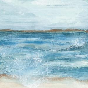Coastal V by Chris Paschke