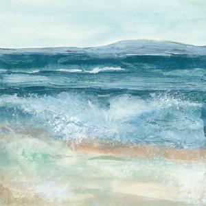 Coastal VI by Chris Paschke