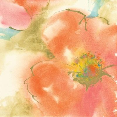 Coral Poppy I by Chris Paschke