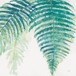 Ferns III Square Cool by Chris Paschke