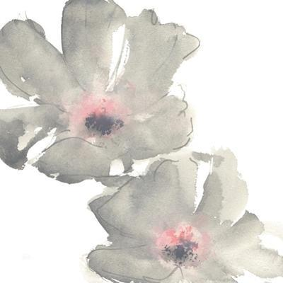 Gray Blush Cosmos I on White by Chris Paschke