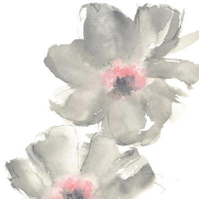 Gray Blush Cosmos II on White by Chris Paschke