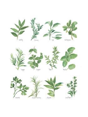 Herb Chart by Chris Paschke