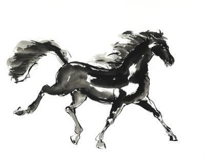 Horse H4 by Chris Paschke