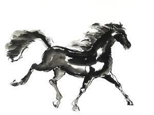 Horse H4 by Chris Paschke