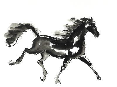 Horse H4