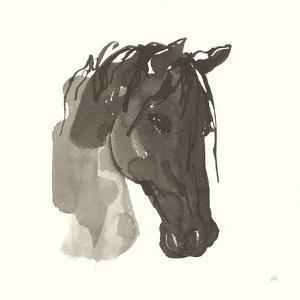 Horse Portrait I by Chris Paschke