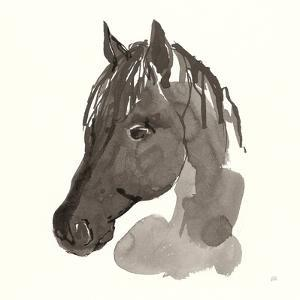 Horse Portrait II by Chris Paschke