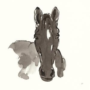 Horse Portrait IV by Chris Paschke