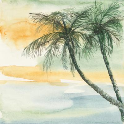 Island Sunset II by Chris Paschke
