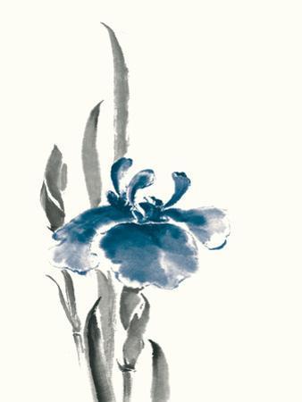 Japanese Iris II Crop Indigo by Chris Paschke