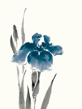 Japanese Iris III Crop Indigo by Chris Paschke