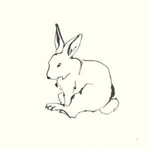 Line Bunny I by Chris Paschke