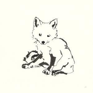 Line Fox by Chris Paschke