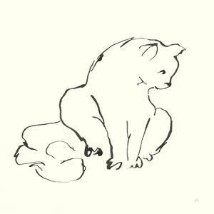Line Kitten II by Chris Paschke
