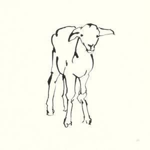 Line Lamb by Chris Paschke