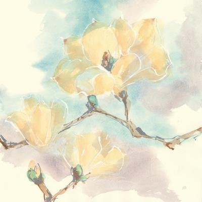 Magnolias in White I by Chris Paschke