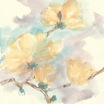 Magnolias in White II by Chris Paschke