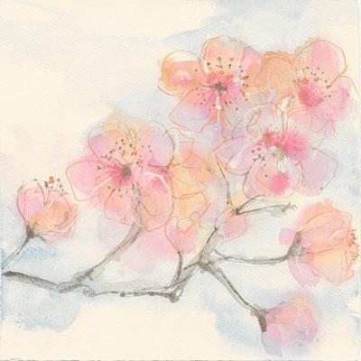 Pink Blossoms III by Chris Paschke