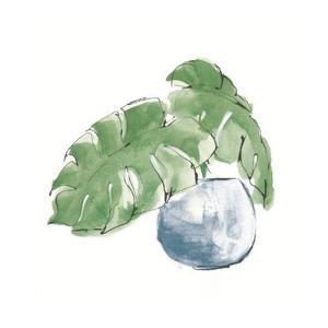Plant Big Leaf IV Dark Green by Chris Paschke
