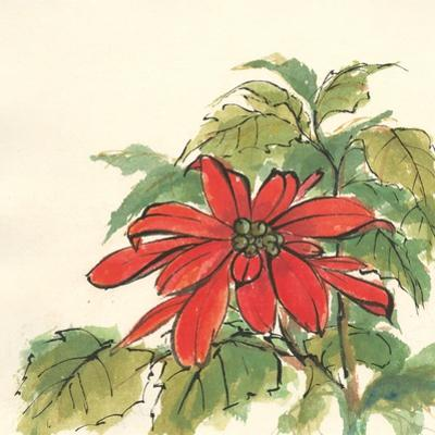 Poinsettia I by Chris Paschke