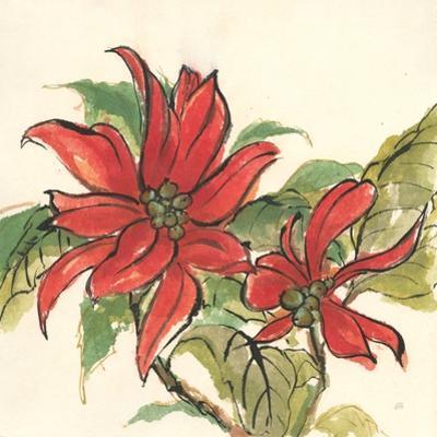 Poinsettia II by Chris Paschke