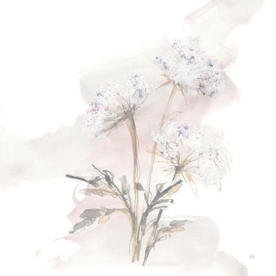 Queen Annes Lace I
