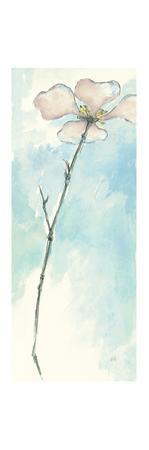 Solitary Dogwood I by Chris Paschke