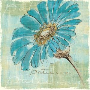 Spa Daisies II by Chris Paschke