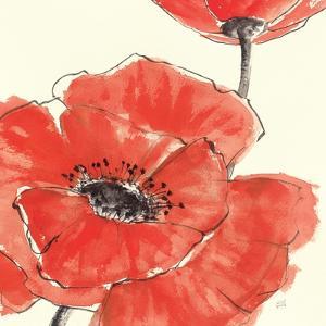 Spring Poppy II by Chris Paschke