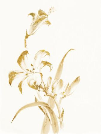 Sumi Daylily II Gold by Chris Paschke