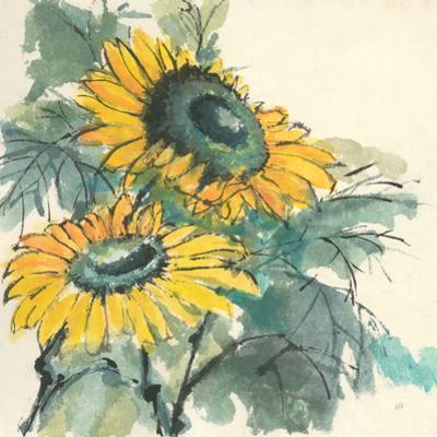 Sunflower I by Chris Paschke