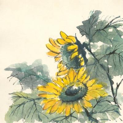 Sunflower II by Chris Paschke