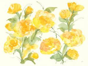 Sunshine Peonies by Chris Paschke