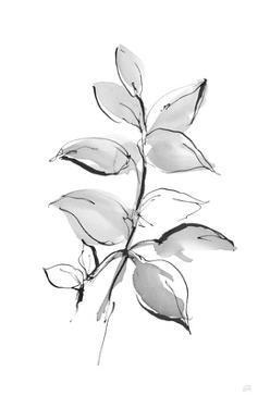 Wash Leaf I by Chris Paschke