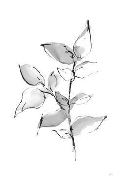 Wash Leaf II by Chris Paschke