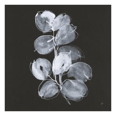 White Eucalyptus I