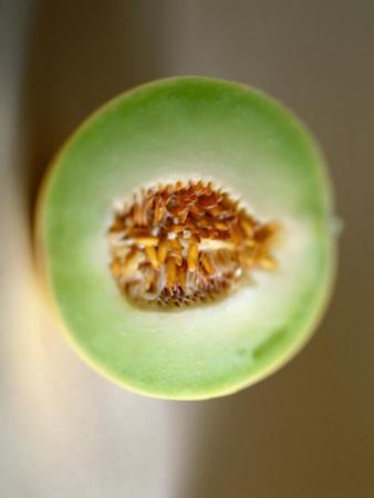 One Half of a Honeydew Melon